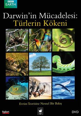 Darwin's Struggle: The Evolution Of The Origin Of The Species -Darwin'in Mücadelesi: Türlerin Kökeni