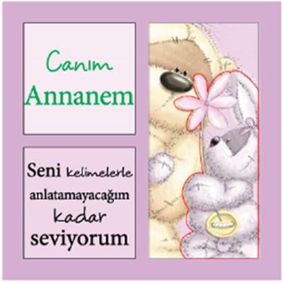Fizzy Moon Magnet Canim Annanem .. Fmrm356160005