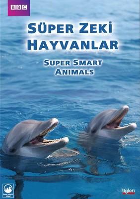 Super Smart Animals - Süper Zeki Hayvanlar