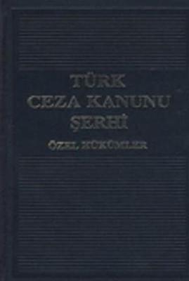 Türk Ceza Kanunu Şerhi (3 Cilt)