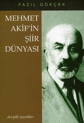Mehmet Akif'in Şiir Dünyası