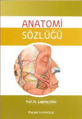 Anatomi Sözlüğü