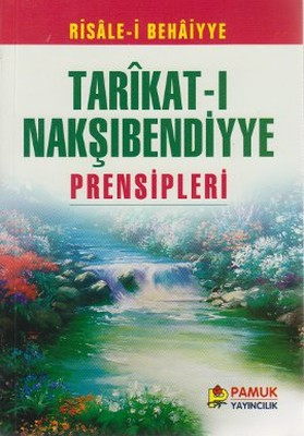 Tarıkat-ı Nakşıbendiyye Prensipleri (Tasavvuf-006/P17)