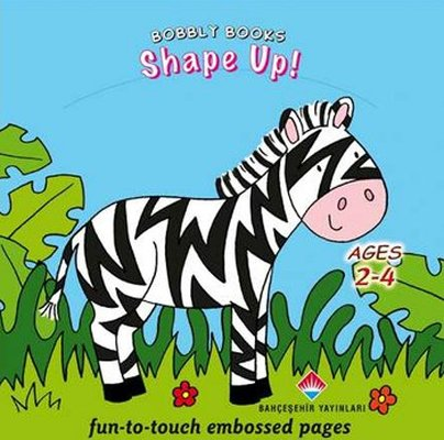 Bobbly Books - Shape Up!