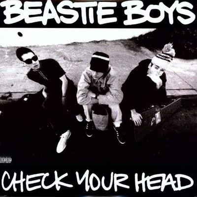 Check Your Head (2xVinyl)