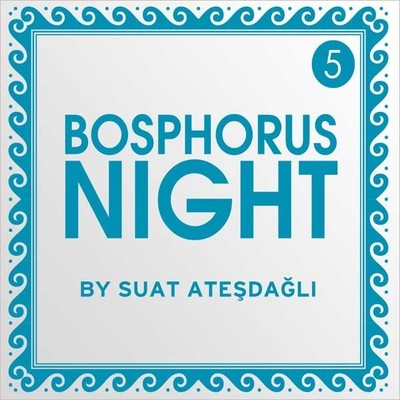 Bosphorus Night 5 by Suat Atesdagli SERI