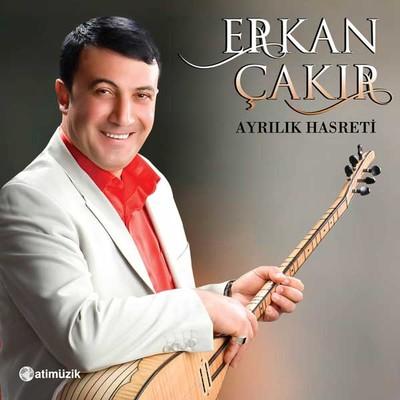 Ayrilik Hasreti