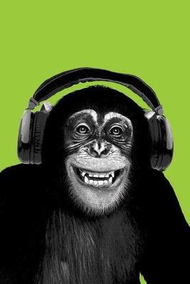 Pyramid International Maxi Poster - Chimpanzee Headphones