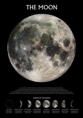 Pyramid International Maxi Poster - The Moon - Phases