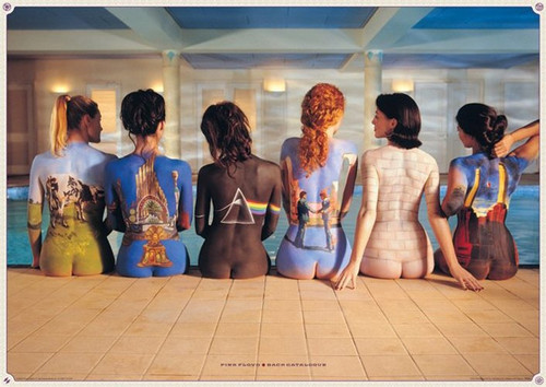 Pyramid International Maxi Poster - Pink Floyd - Back Catalogue