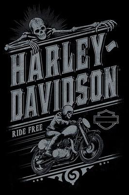 Pyramid International Maxi Poster - Harley Davidson Artwork