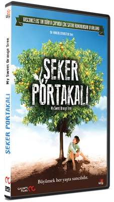 My Sweet Orange Tree - Seker Portakali