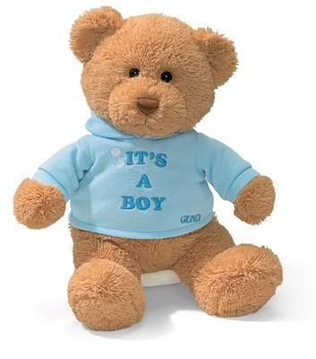 Gund Its A Boy Message Bear 15418