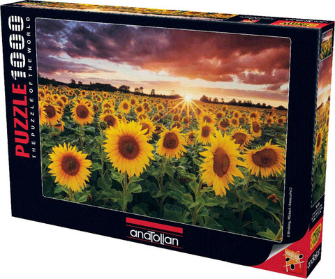 Anatolian Günbatiminda Ayçiçekleri / Field Of Sunflowers At Dusk 1000 Parça 1018