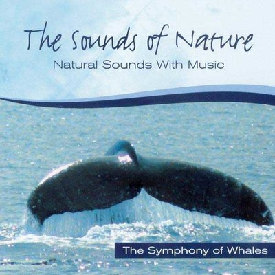 The Symphony Of Whales