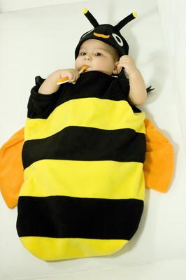 Arı Uyku Tulumu