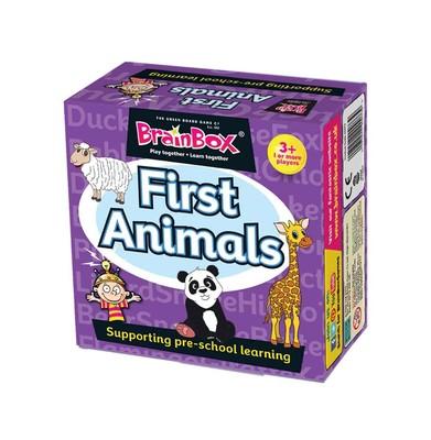 BrainBox Ilk Hayvanlarim/First Animals