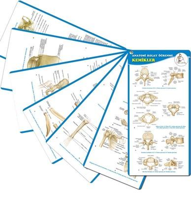 Anatomi Kolay Öğrenme-Kemikler Cep Kartı