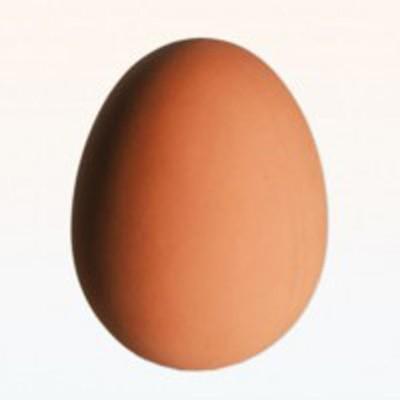 Ootb Zıplayan Yumurta 5.5cm