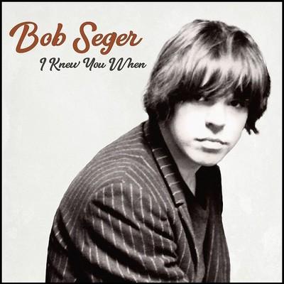 Bob Seger I Knew You When Plak
