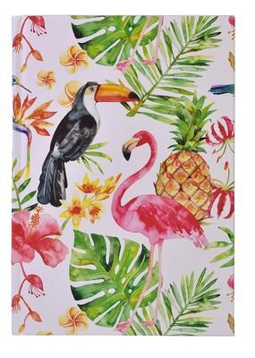 Deffter Paradise / Flamingo Tucan