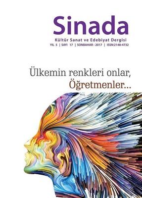 Sinada Dergisi Sayı 17