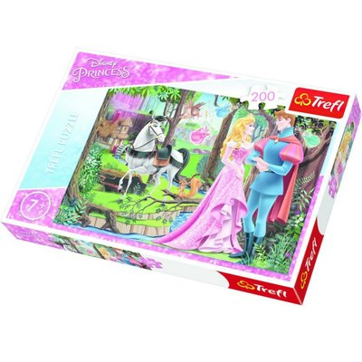 Trefl Puzzle 200 Disney Princess Meeting in The For 13223
