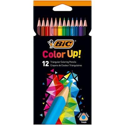 Bic-Color Up Üçgen Kuru Boya Kalemi 12 Renk 950527