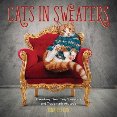 Cats in Sweaters: Flaunting Their Tiny Sweaters and Trademark Attitude