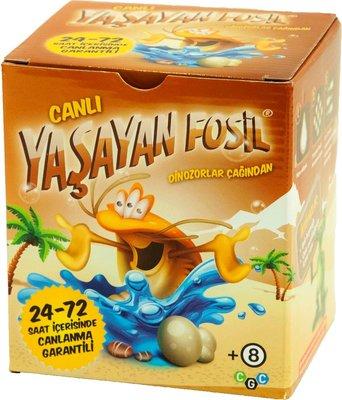 CGC Yaşayan Fosil