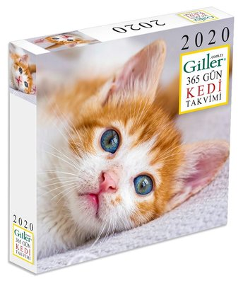 Giller 365 Gün Kedi Masa Takvimi 2020
