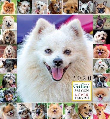 Giller Köpek Duvar Takvimi 2020