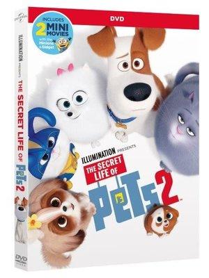 Secret Life Of Pets 2 - Evcil Hayvanlarin Gizli Yaşami 2
