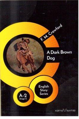 A Dark Brown Dog Stage2 A-2