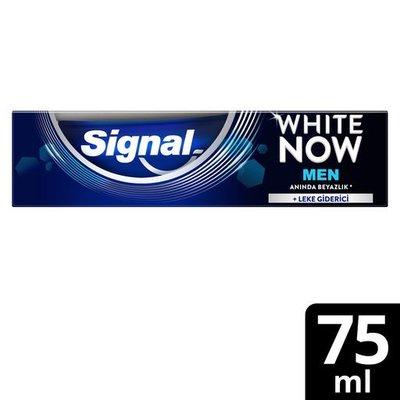 Signal White Now Men Diş Macunu