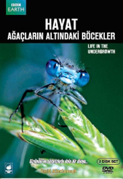Life İn The Undergrowth - Hayat: Ağaçların Altındakı Böcekler Kitap Konusu