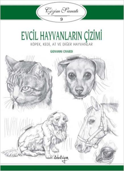 çizim Sanatı Serisi 9 Evcil Hayvanların çizimi Dr Kültür