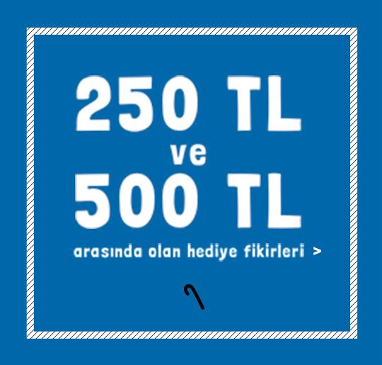 250 TL ve 500 TL arasında olan hediye fikirleri >